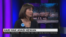 Devina Veronica Ajak Masyarakat Indonesia Lindungi Hewan