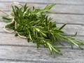 Rosemary, Daun Rempah 'Bumbu' Panjang Umur