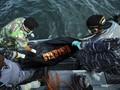 Kapal Polres Labuhanbatu Tenggelam, Sejumlah Personel Hilang