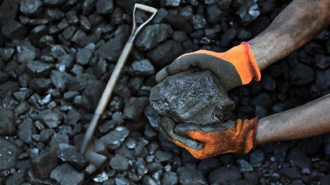 Minyak dan Batu Bara jadi Pemanis Saham Sektor Pertambangan