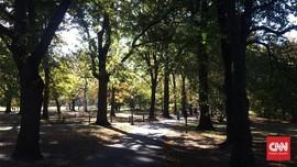 Kurangi Polusi, Kendaraan Dilarang Melintas di Central Park