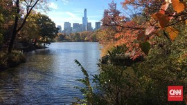 Syahdunya Warna-warni Musim Gugur di Central Park