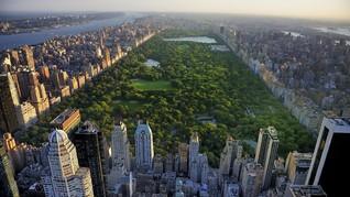 Central Park, Lokasi Syuting Film Paling Populer di Dunia