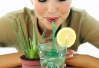 Kebanyakan orang hanya tahu manfaat lidah buaya dari dagingnya. Padahal keberadaan tanaman ini di dalam rumah bisa membantu melawan racun berbahaya dan meningkatkan kualitas tidur, menurut bukti yang ditunjukkan NASA. Foto: Getty Images
