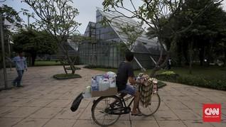 Satu Juta Pohon Belum Bisa Menyejukkan Jakarta