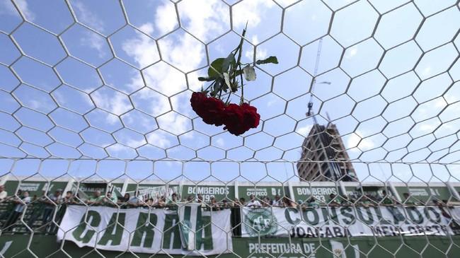 Para suporter menggelar seremoni mengenang para pemain Chapecoense yang menjadi korban kecelakaan pesawat. Chapecoense merupakan klub fenomenal yang merintis langkah mereka dari Divisi Utama hingga bisa ke final Copa Sudamericana tahun ini. (REUTERS/Paulo Whitaker)