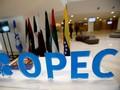 Mayoritas Negara OPEC Ogah Naikkan Produksi Minyak
