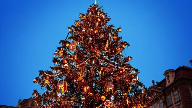 Tren Rambut Pohon Natal Merajai Instagram