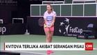 Petra Kvitova Jadi Korban Penusukan Perampok