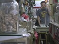 Toko Kucing Hong Kong Tawarkan Tampilan Masa Lalu Kota