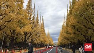Tokyo dan Gangneung, Destinasi Favorit Pengguna Airbnb