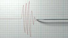 Indonesia Dilanda Gempa, Tagar Jadi 'Trending Topic' Dunia