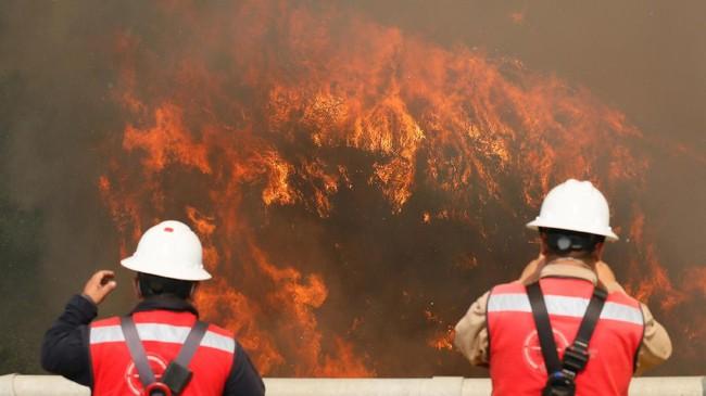 Hampir 50 brigade pemadam kebakaran dari Valparaiso dan daerah sekitarnya dikerahkan ke lokasi kejadian untuk segera memadamkan api. Penyelidik juga diterjunkan untuk meneliti penyebab kebakaran. (Reuters/Rodrigo Garrido)