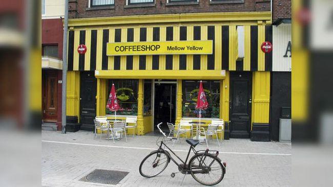 Puluhan Kafe Bermenu Ganja di Belanda Tutup Usaha