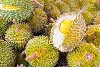 Kaya serat menjadikan durian bisa mencegah terjadinya sembelit dan memperlancar pergerakan usus. Vitamin B1 serta B3 yang ada mampu menjaga pencernaan tetap sehat. Foto: iStock