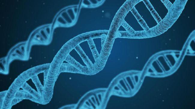 Penemu DNA Rasis, Gelar Nobel Ditanggalkan