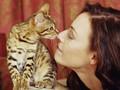 Klinik Hewan Irlandia Buka Lowongan Jadi Pemeluk Kucing