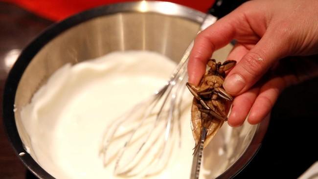 Serangga air lainnya juga disajikan dengan tambahan whipped cream yang unik. Di dalam whipped cream ini juga dicampurkan sari serangga. (REUTERS/Toru Hanai)