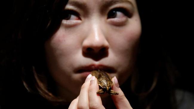 Serangga lain seperti serangga air juga jadi camilan di kafe ini. (REUTERS/Toru Hanai)