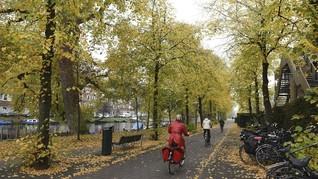 Kota-kota Terbaik Untuk Bersepeda