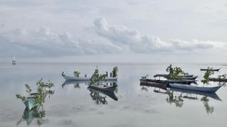 Mulai Juni Liburan dari Jakarta ke Wakatobi Bakal Lebih Mudah