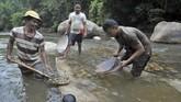 Warga mencari emas dengan mendulang di Sungai Batang Sumpur Lubuk Tasapik, Nagari Sisawah, Sumatera Barat, Rabu (15/2). (ANTARA FOTO/Iggoy el Fitra)