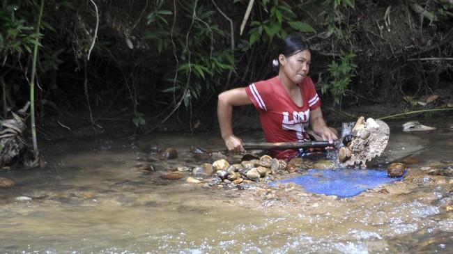 Seorang wanita menyekop pasir dan bebatuan untuk didulang di Sungai Batang Sumpur Lubuk Tasapik, Nagari Sisawah, Sumatera Barat, Rabu (15/2). (ANTARA FOTO/Iggoy el Fitra)