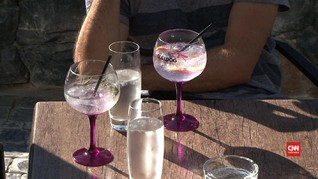 Ragam Cita Rasa Gin Asal Afrika Selatan
