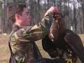 Militer Prancis Latih Elang Jatuhkan Drone