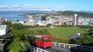 Tawaran Bekerja Menarik dari Industri Teknologi Selandia Baru