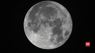 Elon Musk Berencana Buka Perjalanan Wisata ke Bulan