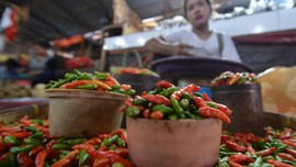 Harga Cabai Rawit Merah Sentuh Rp80 Ribu per Kg