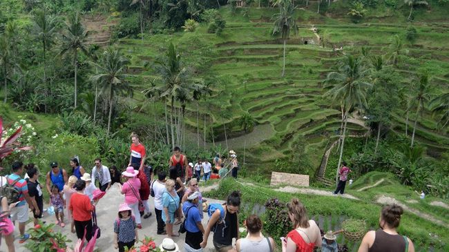 'Meneropong' Ekowisata di Indonesia