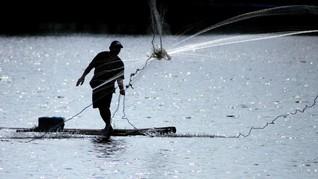 Pelemahan Rupiah Dongkrak Harga Pakan Ikan