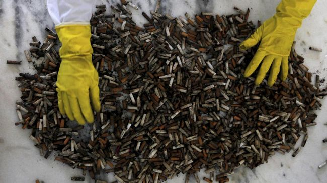 Puntung Rokok Ancam Masa Depan Ikan di Lautan