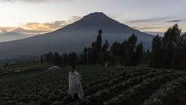 Mengawal Komitmen Dua Kabupaten Menjaga Sindoro-Sumbing