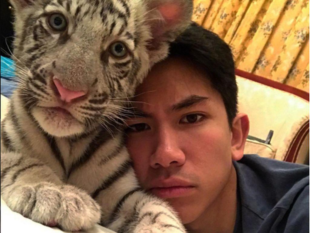Hewan peliharaan sang pangeran pun tak biasa, sang harimau putih yang sudah jinak diajak foto berdua. Lucu mana? Foto: Instagram/tmski