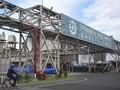 Progres Pembangunan Smelter Freeport Baru 4,9 Persen