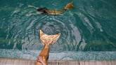 Di sela-sela latihan berenang dengan kostum putri duyung, di antara mereka ada yang selalu menyempatkan beristirahat sejenak di pinggir kolam dengan posisi kaki yang berbentuk ekor ikan berada di dalam air. (AFP PHOTO / Natalia Kolesnikova)