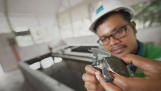 Holding Tambang Janji Bangun Smelter Setelah Kuasai Freeport