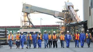 DPR Minta Freeport Tanggung Jawab Kerusakan Ekosistem Papua