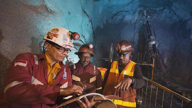 Investasi Besar, Freeport Cari Mitra Bangun Smelter