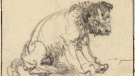 Sketsa Anjing Salah 'Majikan' Selama 250 Tahun