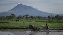 DPR Minta Mentan Benahi Perhitungan Data Pertanian