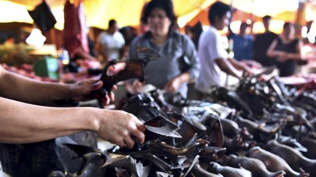 Keberadaan pasar ekstrem Tomohon ini kerap menimbulkan polemik. Komunitas pencinta hewan langka sering galang dukungan untuk melarang penjualan hewan-hewan ini. (AFP PHOTO/Bay ISMOYO)