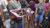 Tikus yang dijual di pasar Tomohon ini bukan tikus yang biasa ditemukan di selokan atau gorong-gorong. Tikus-tikus ini atau biasa disebut kawok adalah tikus hutan yang memiliki ciri ekor berwarna putih. (AFP PHOTO/Bay ISMOYO)