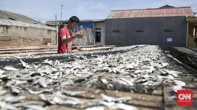Selain menjualanya, hasil dari tangkapan ikan para nelayan di kawasan itu juga diolah menjadi ikan asin. (CNN Indonesia/ Hesti Rika)