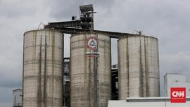 Semen Indonesia Tebar Dividen Rp805,7 Miliar