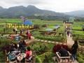 Desa Pujon Berbenah Jadi Desa Wisata Terbaik di Malang