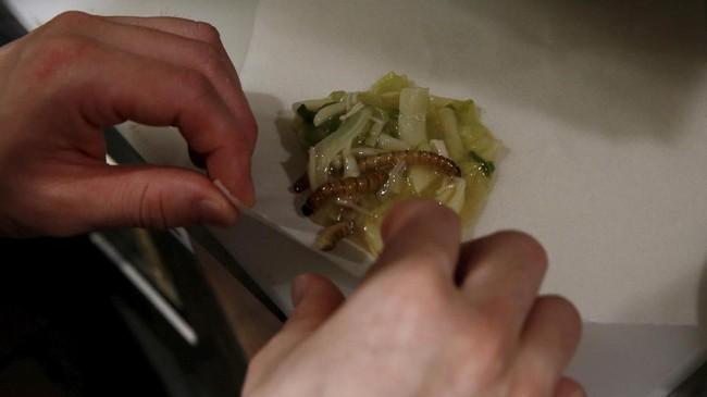 Selain ramen, serangga ini juga dikreasikan dalam bentuk spring roll atau lumpia. Serangga ini digulung dengan kulit lumpia dan tambahan irisan sayur. (REUTERS/Kim Kyung-Hoon)